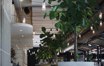 Project Neni grijze plafondpanelen directe bevestiging